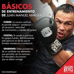 Básicos de entrenamiento de Juan Manuel Márquez. #CletoReyes #JuanManuelMarquez #workout #boxeo #boxinggloves #box