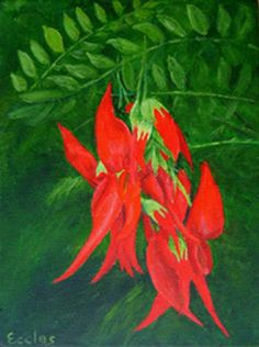 http://www.thejonesgallery.co.nz/images/Kakabean-original-painting-of-a-red-kakabean-flower-with-green-leaf-by-New-Zealand-artist-Linda-Eccles.jpg