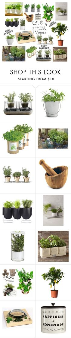 """""""Enjoy the pleasure of your own fresh herbs """" by akalinin ❤ liked on Polyvore featuring interior, interiors, interior design, home, home decor, interior decorating, Nude, Potting Shed Creations, Bambeco and Abbott"""