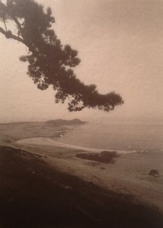 William E. Dassonville(American, 1879 - 1957) Carmel Point, 1905 Gum Bichromate Print on Glassine