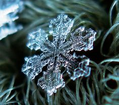Amazing photos of beautiful snowflakes captured by talented Moscow based photographer Alexey Kljatov.