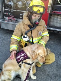 Our dogs visit a local fire station.  They learn that oxygen masks are not scary and fire fighters receive the calming and loving presence of a dog.