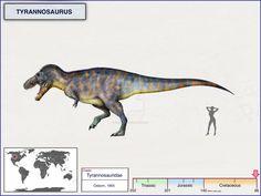 Tyrannosaurus by cisiopurple