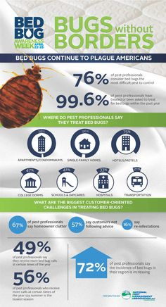 GROSS. Bed Bug Epidemic Not Waning Survey Shows [Infographic]