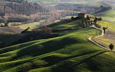 Picture of the Day: Meanwhile in Tuscany…