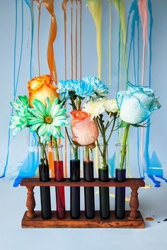 Miniature Rhino: Bright & Colorful Dyed Flowers