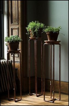 Copper pipe plant stands.