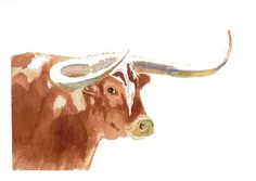 Longhorn Art Print by wrensroost on Etsy, $25.00