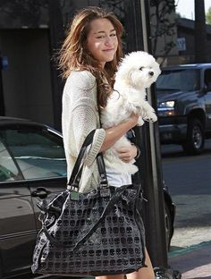 Miley Cyrus cute pampered pup!