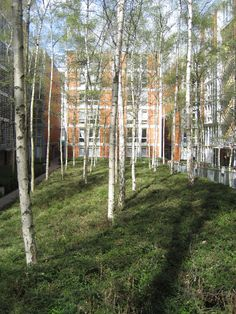 rue de meaux public housing project by renzo piano and desvigne & dalnoky