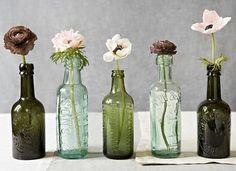 Alignement de fleurs dans des bouteilles / flowers
