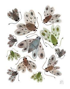 Swarm of Empresses original watercolor painting