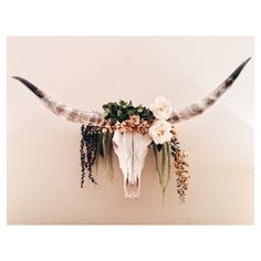 flower ideas for my longhorn
