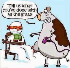 Brookstone Builders, Inc.: Brookstone Builders, Inc-Friday Funny-Snowman vs. ...