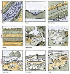 Ladywell_Fields-by-BDP-10 « Landscape Architecture Works | Landezine sketch illustrating variety of activities