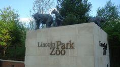 The Zoo!!