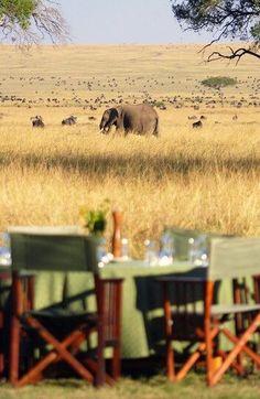 Alfresco -- Maasai Mara National Reserve, Kenya
