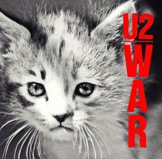 kitten cover @Dan Baker