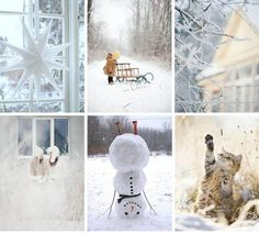Love this winter mood board and especially the snowman standing on his head.
