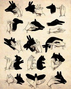 How to make shadows in the shape of animals with your hands