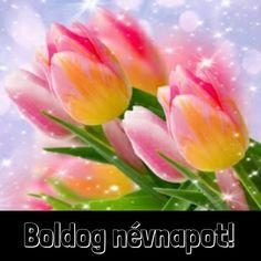 "Photo from album ""Цветы от on Yandex. Flowery Wallpaper, Happy Birthday, Spring, Flowers, Plants, Gardens, Tulips, Beautiful Flowers, Computer Wallpaper"