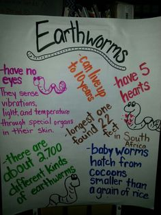 Earthworms - Anchor Chart with Information Kindergarten Anchor Charts, Kindergarten Science, Preschool Activities, Science Fair, Science Experiments, Animal Science, Living And Nonliving, Earthworms, Forest School