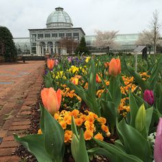 Rainbow of blooms in the Central Garden