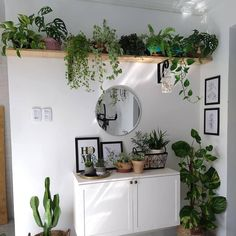 Room With Plants, House Plants Decor, Plant Decor, Bedroom Plants, Bedroom Decor, Urban Rooms, Jungle Bedroom, Aesthetic Room Decor, Home Living Room