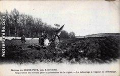 Cartes Postales Photos Château du GRAND-PUCH Preparation du terrain pour la plantation de la vigne. - Le labourage à vapeur ou défonçage. 33500 LIBOURNE gironde (33)