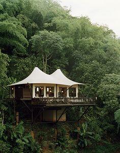 Treehouse-nice.