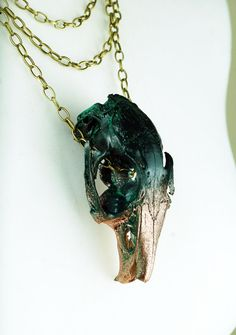 UNIQUE real animal skull dark forest green and by VirginiatheWolf