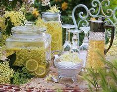 Zöld(Örök)ség: Bodza receptek és hatásai
