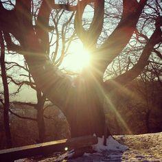Il sole di febbraio