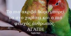 Parrot, Quotes, Animals, Parrot Bird, Quotations, Animales, Animaux, Animal, Animais