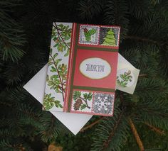 Christmas thank you card holiday thank you card holly pine