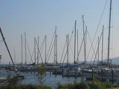 Blick auf den Yachthafen in Lauterbach San Francisco Skyline, Travel, Island, Viajes, Destinations, Traveling, Trips