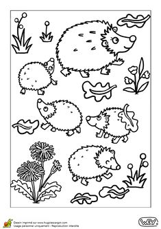Hedgie family to color Animal Coloring Pages, Colouring Pages, Adult Coloring Pages, Coloring Sheets, Coloring Books, K Crafts, Preschool Crafts, Hedgehog Craft, Zentangle Drawings
