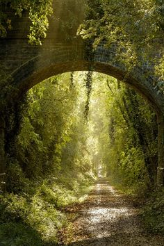 Warwickshire, England - where Lizzie Bennett traveled with the Gardiner's in Pride & Prejudice (photo of Kenilworth Greenway by Russ Barnes)