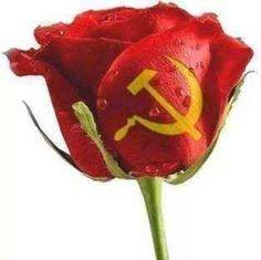 Oggi festeggiamo la liberazione ... ma la libertà vera è di nuovo da conquistare Festeggiamo il 25 aprile ma i suoi valori ed i suoi contenuti siamo certi che siano ancora preservati ? O non abbiamo bisogno piuttosto di un nuovo 25 aprile ?