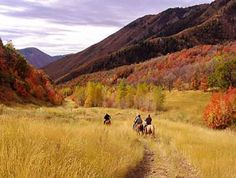 Hobble Creek Canyon | WildernessUSA