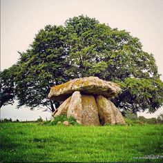 Tthe Neolithic portal tomb/dolmen at Haroldstown, Co Carlow, Ireland. It's circa 5500 years old Source