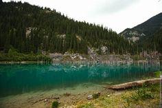 Sunken Forest, Kaindy Lake, Kazakhstan, photo 2