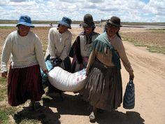 Accion contra el Hambre / Bolivia Seguridad Alimentaria Emergencia
