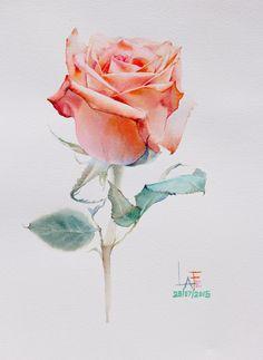 "Watercolor without drawing "" rose painting by la fe Watercolor Rose, Watercolor Cards, Watercolor Illustration, Watercolor Paintings, Watercolor Pencils, Papier Paint, Design Floral, Plant Drawing, Arte Pop"