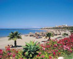 images of Spain   Playa de las Americas - Tenerife