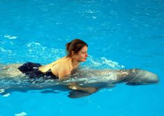 Swimming with dolphins - Wikipedia, the free encyclopedia