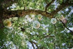 The Ash Tree at Aswanley. Image by Caro Weiss. Wedding 2015, Summer Wedding, Ash Tree, Wedding Inspiration, Wedding Ideas, Barn Wedding Venue, Happy Day, Wedding Decorations, Weddings
