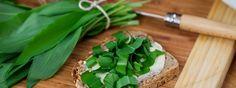 A salátán túl: 50 bevált medvehagymás recept! | Receptek | Mindmegette.hu Celery, Vegetables, Food, Essen, Vegetable Recipes, Meals, Yemek, Veggies, Eten