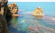 Art class: the seashore and the cliffs of Castiglioncello
