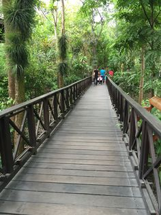 #parquehistorico#ecuador#guayaquil